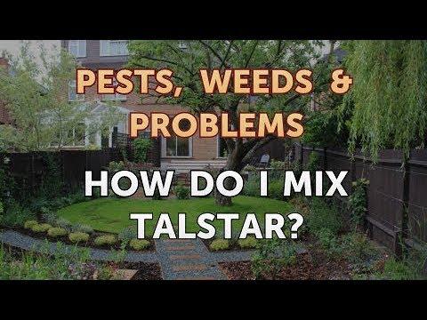 How Do I Mix Talstar?