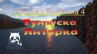 Русская рыбалка 4 стрим Общение Розыгрыш в описании рр4 стрим