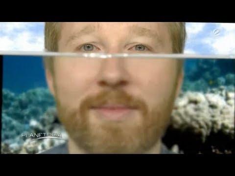 Kriegshölle Unter Wasser