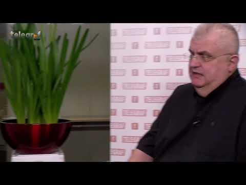 Nenad Čanak - intervju za Telegraf