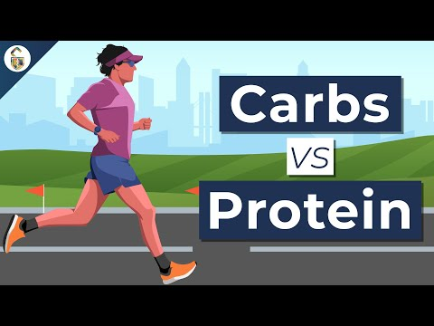 Carbs vs Protein For Endurance Which Is Better?