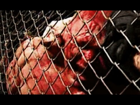 WWE HELL IN A CELL 2015 FULL SHOW LIVE REACTION REVIEW-Brock Lesnar VS The Undertaker & Bray Wyatt!