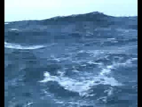 Corribee Mingming in the Celtic Sea
