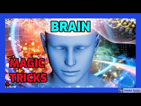 MAGIC TRICKS VIDEOS IN TAMIL #480 I BRAIN from LUBOR FIEDLER
