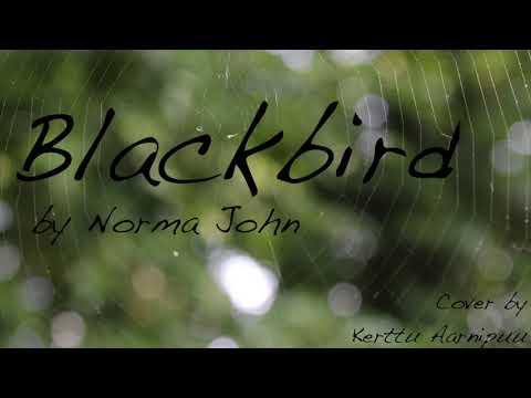 Blackbird - Norma John (Cover)