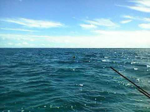 I-Kiribati Spearfishing