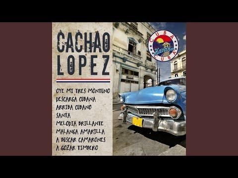 Cachao López - Arriba cubano mp3 indir
