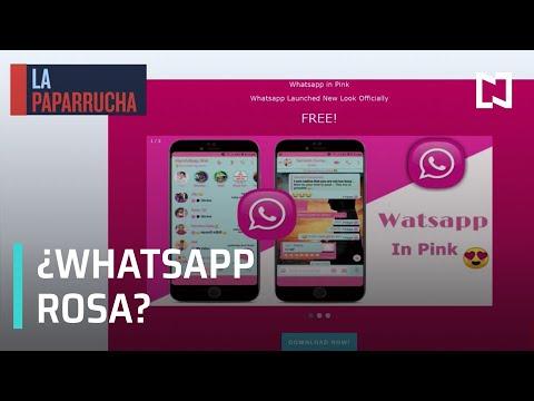 WhatsApp rosa ¿Actualización o virus? esta es la paparrucha del día - Punto y Contrapunto