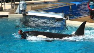 BEST Shamu Show - Shamu jumping out of water with Trainer