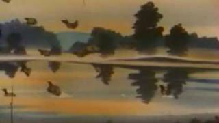 Le merveilleux voyage de Nils Holgersson au pays des oies sauvages - générique