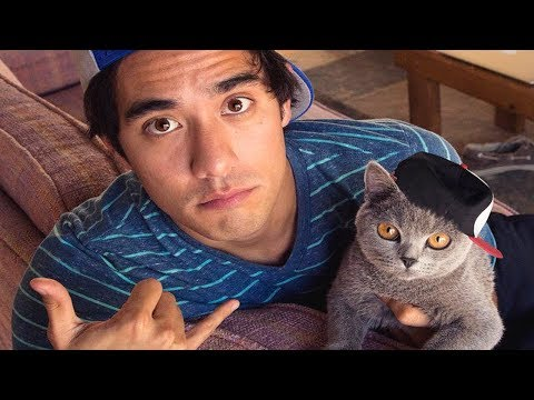 Best Zach King Magic Tricks with Pets - Funny Animals Vines Video