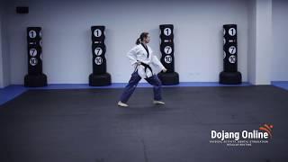 Basic Pattern - White Belt (10th Gup)