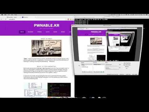 [Writeup] pwnable.kr - geohot