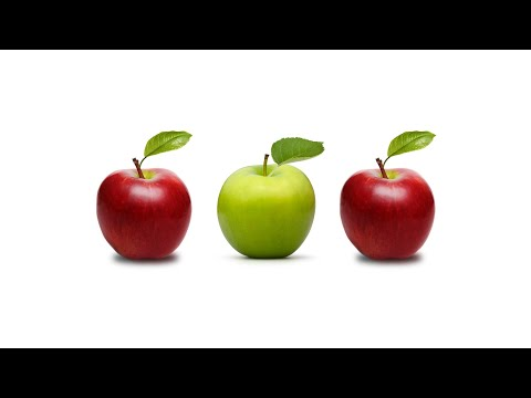 Dan Riskin on how social decency impacts the environment