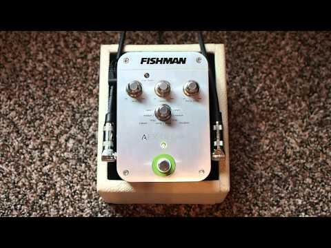 Fishman AFX Acoustic Delay