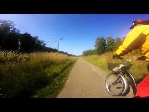 Ride Riga - Jurmala (BULDURI)