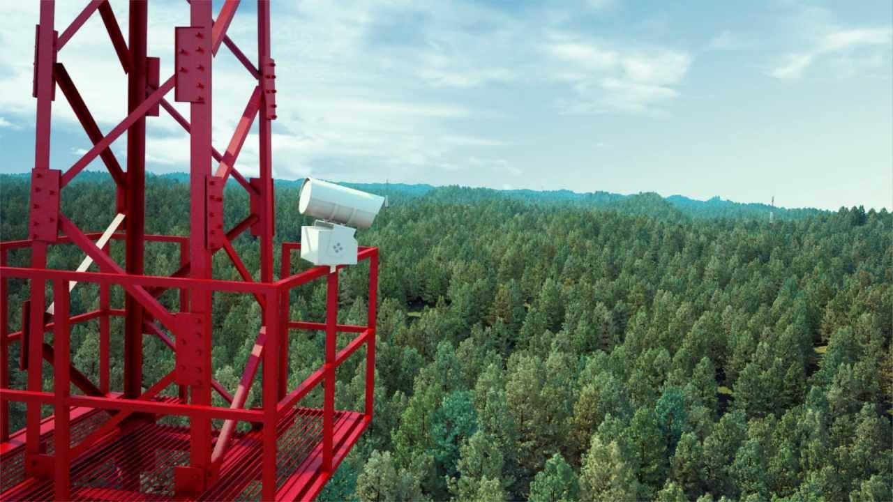 """""""Лесной Дозор"""" - система мониторинга леса"""