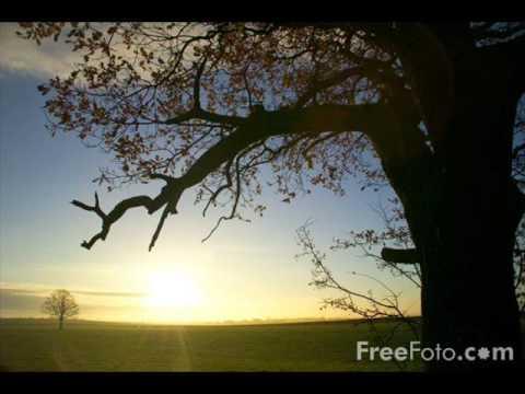 Ronny K. - Morning Light [EOYC 2008 Anthem]