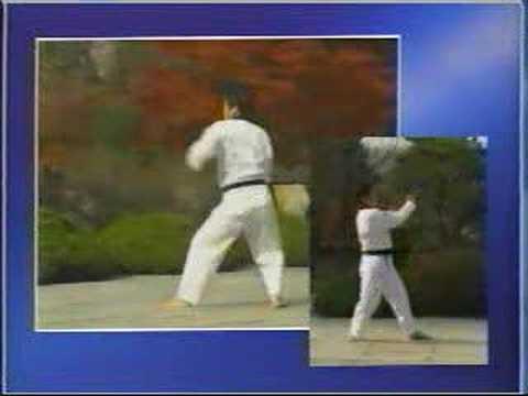 taekwondo poomse 15 chonkwon