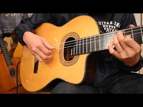 USED/Takamine NPT-315@guitarshoptantan