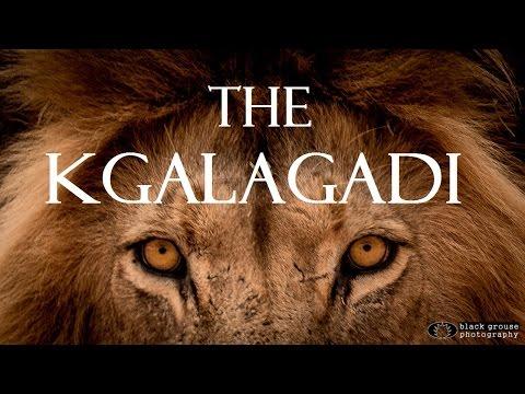 the-kgalagadi-(ktp)---a-kalahari-self-drive-safari-adventure-full-hd