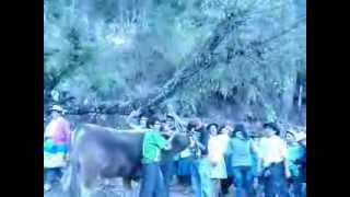 Fiesta de Santiago en Arhuayacu 2013 - Familia Avendaño [5-5]