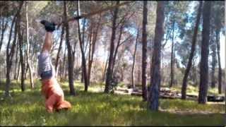 jungle workout trx shoulder exercises