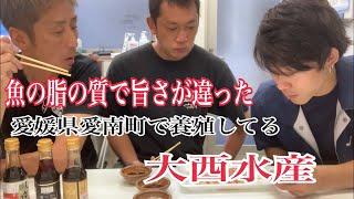 魚の脂の質で旨さが違った 愛媛県愛南町で養殖してる大西水産編 vol.375