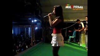 Acha Kumal - Cinta Putih - PANTURA 140408