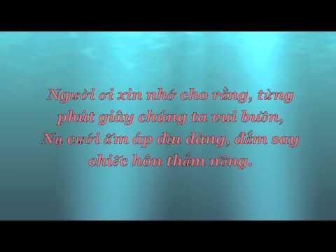 Tình Yêu Hoàn Hảo (Perfect Love) by Triệu Hoàng & Huyền Trang (+lyrics & vsub)