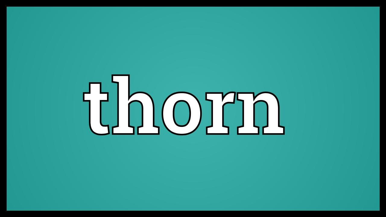 Thorn Meaning