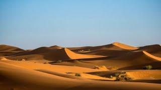 O povo recebe o maná no deserto