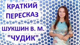 Пересказ Шукшин В. М. «Чудик»