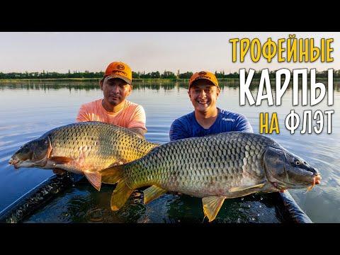 ТРОФЕЙНЫЙ КАРП на флэт фидер. 48 часов рыбалки на Марьевском водохранилище.