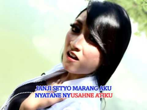 Rina Amelia - Tembang Tresno (Official Music Video)