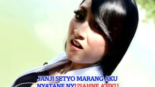 Rina Amelia - Tembang Tresno (Official Music Video)