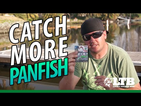 Tips To Catch More Panfish!