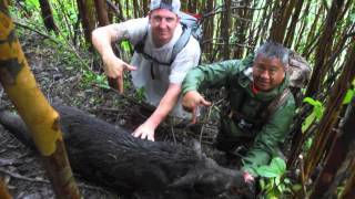 Nick Craft of California Goes Wild Boar Dog & Knife Hunting in Hawaii with Hook You Up Outfitters