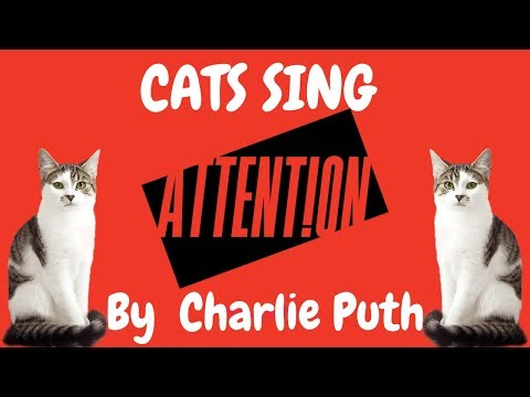Cats Sing Attention by Charlie Puth | Cats Singing Song