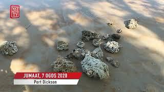 Penyangak batu karang