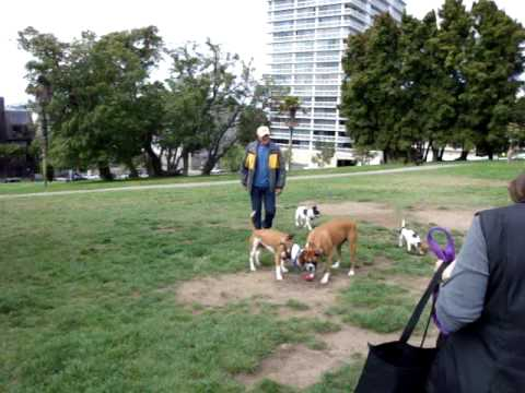 Lafayette Park with Jon, Randy, Joy, Hannah and So...