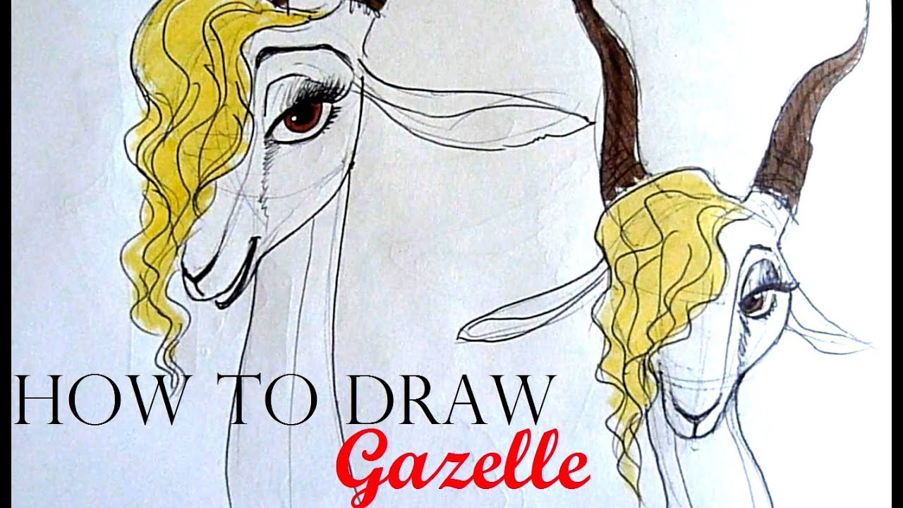 [request] HOW TO DRAW Gazelle (Zootopia)