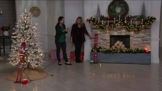 Mr.Christmas Animated and Musical Stepping Character on QVC