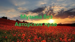 Kaleo Way Down We Go Музыка без Авторских прав