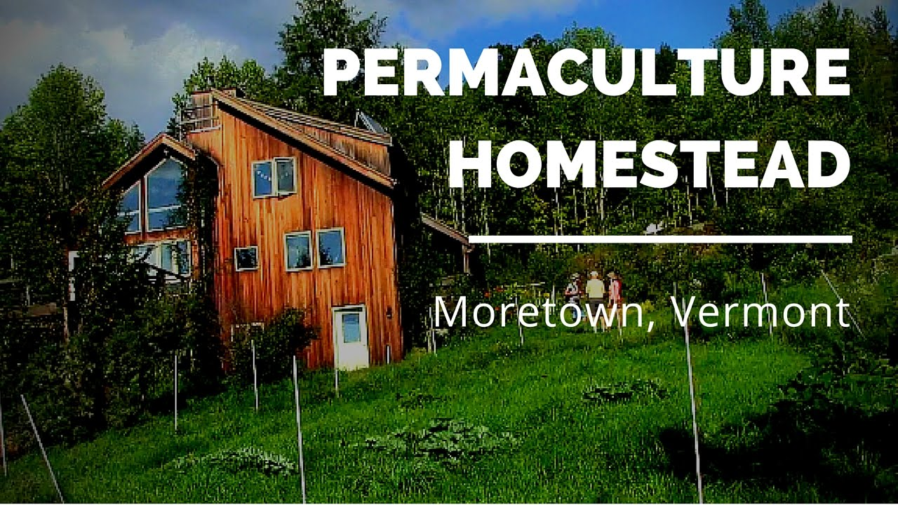 Ben Falk Homestead   Permaculture Design Course   Part 2   YouTube