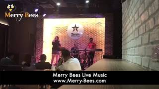 Merry Bees Live Music - One Moment In Time (Whitney Houston cover)
