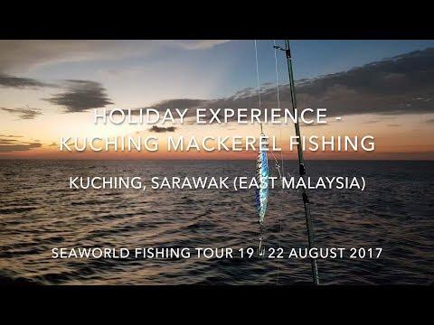 Kuching Mackerel Fishing Vacation Aug 2017