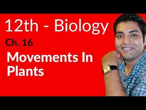 Movements in Plants Biology - Biology Chapter 16 Support and Movements - FSC Part 2 Pre Medical