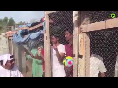 """阿联酋男子囚禁印度员工只为拍""""搞笑视频""""支持2019亚洲杯"""