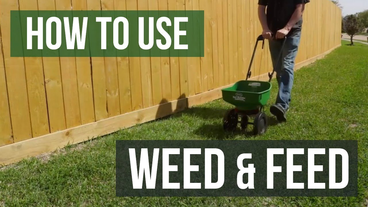 How To Use Weed And Feed Fertilizer Youtube